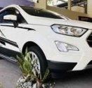 Ford EcoSport 2018 - Ưu đãi 10 triệu tiền mặt giá 535 triệu tại Cả nước