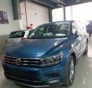 Xe Volkswagen Tiguan Allspace 2019 đủ màu giao xe ngay – hotline: 0909 717 983 giá 1 tỷ 699 tr tại Tp.HCM