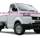 Bán xe tải Suzuki Pro 740 kg, thùng xe đủ loại, chất lượng, chính hãng, giá hợp lý giá 312 triệu tại Bình Dương