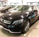 Cần bán Mercedes C300 đời 2018, màu đen, giao ngay toàn quốc giá 1 tỷ 939 tr tại Lâm Đồng