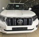 Bán Toyota Land Cruise Prado VX 2019, màu trắng, xe và giấy tờ giao ngay, LH 0906223838 giá 2 tỷ 560 tr tại Hà Nội