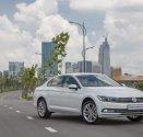 Đẳng cấp doanh nhân - Volkswagen Passat Bluemotion giá 1 tỷ 480 tr tại Tp.HCM