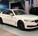 Bán BMW 520i đời 2019, màu trắng, nhập khẩu giá 2 tỷ 99 tr tại Tp.HCM