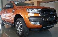 Bán xe Ford Ranger giá rẻ trên toàn quốc, phiên bản Ranger Wiltrak 3.2, hỗ trợ góp giá 925 triệu tại Đà Nẵng