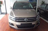 Đà Nẵng: Volkswagen Tiguan 2.0 TSI đời 2016, màu nâu, nhập khẩu nguyên chiếc giá 1 tỷ 290 tr tại Bình Định