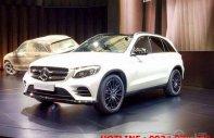 Mercedes GLC 300 AMG đời 2018 - Ưu đãi đặc biệt, xe giao ngay giá 1 tỷ 835 tr tại Tp.HCM