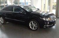 Cần bán Volkswagen Passat CC đời 2013, nhập khẩu nguyên chiếc giá 1 tỷ 358 tr tại Tp.HCM