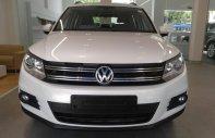 (VW Sài Gòn) SUV Tiguan 2.0 TSI nhập Đức, KM trong tháng 8 tới 50 triệu, LH phòng bán hàng 093.828.0264 Mr Kiệt giá 1 tỷ 290 tr tại Tp.HCM