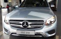 Mercedes GLC 250 4 Matic 2017, ưu đãi giá tốt tại Mercedes Trường Chinh giá 1 tỷ 879 tr tại Tp.HCM