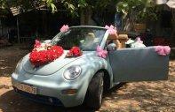 Bán Volkswagen Beetle đời 2007, xe nhập giá 405 triệu tại Tp.HCM
