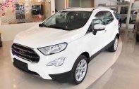 Bán xe Ford EcoSport Titanium 1.0 Ecoboost đời 2018, xe đủ màu, hỗ trợ mua xe trả góp có lợi giá 689 triệu tại Tp.HCM