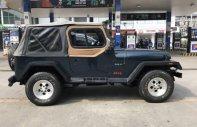 Bán xe Jeep Wrangler năm sản xuất 1992, nhập khẩu   giá 310 triệu tại Tp.HCM