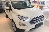 Mua Ford EcoSport  2018 giá chỉ từ 180 triệu, xe đủ màu giao ngay giá 545 triệu tại Tp.HCM