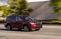 Bán xe Subaru Forester XT năm 2013, màu đỏ  giá 900 triệu tại Tp.HCM
