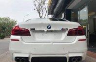 Bán BMW 5 Series 520i năm sản xuất 2015, màu trắng, nhập khẩu giá 1 tỷ 686 tr tại Hà Nội