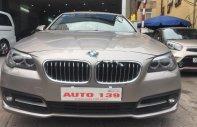 Bán BMW 5 Series 520i sản xuất năm 2014, màu vàng, nhập khẩu giá 1 tỷ 320 tr tại Hà Nội