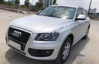 Bán xe Audi Q5 sản xuất 2010, màu bạc, xe nhập giá 930 triệu tại Tp.HCM