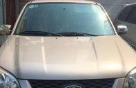 Cần bán gấp Ford Escape năm sản xuất 2012 số tự động giá 450 triệu tại Tp.HCM