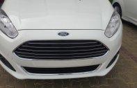 Bán xe Ford Fiesta 1.0 2018 giá rẻ nhất Tây Ninh LH 0898 482 248 giá 560 triệu tại Tây Ninh