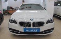 Việt Tuấn Auto bán BMW 5 Series 520i đời 2013, màu trắng, xe nhập giá 1 tỷ 400 tr tại Hà Nội