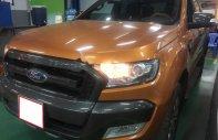 Bán ô tô Ford Ranger Wildtrak 3.2L đời 2017, nhập khẩu nguyên chiếc, giá 850tr giá 850 triệu tại Tp.HCM