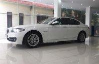 Cần bán xe BMW 5 Series 520i năm sản xuất 2014, màu trắng, nhập khẩu nguyên chiếc giá 1 tỷ 460 tr tại Hà Nội