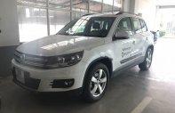 Bán Volkswagen Tiguan 2.0 AT sản xuất 2016, màu trắng, xe nhập giá 1 tỷ 250 tr tại Hà Nội