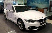 Cần bán BMW 4 Series 420i GC sản xuất năm 2017, màu trắng, giá tốt giá 487 triệu tại Tp.HCM