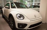 Volkswagen New Beetle Dune - 2018 Xe mới Nhập khẩu giá 1 tỷ 469 tr tại Cả nước
