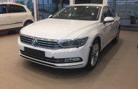 Bán xe Volkswagen Passat 1.8 Bluemotion sản xuất năm 2017, màu trắng, xe nhập giá 1 tỷ 450 tr tại Tp.HCM