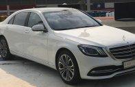 Bán Mercedes S450 Luxury xuất hiện tại thị trường Việt Nam, đẳng cấp giá 4 tỷ 759 tr tại Tp.HCM