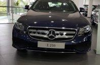 Bán xe Mercedes E250 đời 2018, màu xanh lam giá 2 tỷ 479 tr tại Tp.HCM