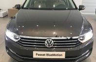 Bán xe Volkswagen Passat 1.8 Bluemotion sản xuất 2018, màu xám, nhập khẩu giá 1 tỷ 450 tr tại Tp.HCM