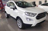 Bán xe Ford EcoSport đời 2018, màu trắng, giá chỉ 647 triệu giá 647 triệu tại Tp.HCM