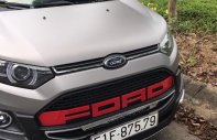 Cần bán Ford EcoSport 1.5L Titanium AT full Option 2017, màu xám nhám, chính chủ giá fix 620tr giá 620 triệu tại Bình Dương