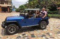 Cần bán lại xe Jeep Wrangler đời 1980, màu xanh lam giá cạnh tranh giá 150 triệu tại Bình Thuận