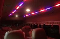 Bán xe Transit Limousine 10 chỗ độc quyền của Autokingdom tại Long Biên Ford, Em Hân 0934.635.227 giá 1 tỷ 195 tr tại Hà Nội