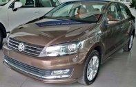 Cần bán Volkswagen Polo 1.6L đời 1990, màu nâu, nhập khẩu  giá 699 triệu tại Tp.HCM