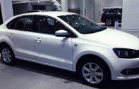 Cần bán Volkswagen Polo 1.6L năm 2018, màu trắng, nhập khẩu chính hãng giá 699 triệu tại Tp.HCM