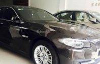 Bán BMW 5 Series 520i năm sản xuất 2015, màu đen, nhập khẩu nguyên chiếc giá 1 tỷ 490 tr tại Tp.HCM