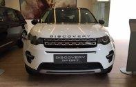 Bán ô tô LandRover Discovery Sport HSE sản xuất năm 2017, màu trắng, nhập khẩu nguyên chiếc số tự động giá 2 tỷ 500 tr tại Tp.HCM