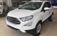 Bán xe EcoSport giá cực tốt, khuyến mãi vào tháng 8 giá 679 triệu tại Hà Nội