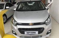 Cần bán Chevrolet Spark sản xuất 2018, màu bạc, giá 389tr giá 349 triệu tại Cần Thơ