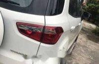 Bán xe Ford EcoSport Titanium đời 2015, màu trắng, 490 triệu giá 490 triệu tại Tp.HCM