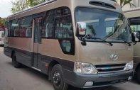 Đại lý chuyên phân phối xe County mới tại Tiền Giang và các tỉnh miền tây- trả góp 80%- LH: 01294. 360. 340 giá 1 tỷ 300 tr tại Tiền Giang