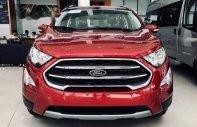 Bán ô tô Ford EcoSport năm 2018, giá tốt giá 569 triệu tại Tp.HCM