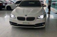 Xe Cũ BMW 5 520i 2015 giá 1 tỷ 560 tr tại Cả nước