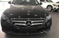 Bán ô tô Mercedes E250 năm sản xuất 2018, màu đen giá 2 tỷ 479 tr tại Tp.HCM