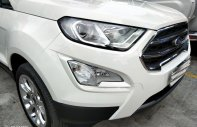Bán Ford Ecosport 1.0 Ecoboost 2018 bhvc, 3m, camera giá 669 triệu tại Tp.HCM