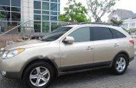 Cần bán lại xe Hyundai Veracruz sản xuất 2007, màu bạc, nhập khẩu nguyên chiếc, 490 triệu giá 490 triệu tại Cần Thơ